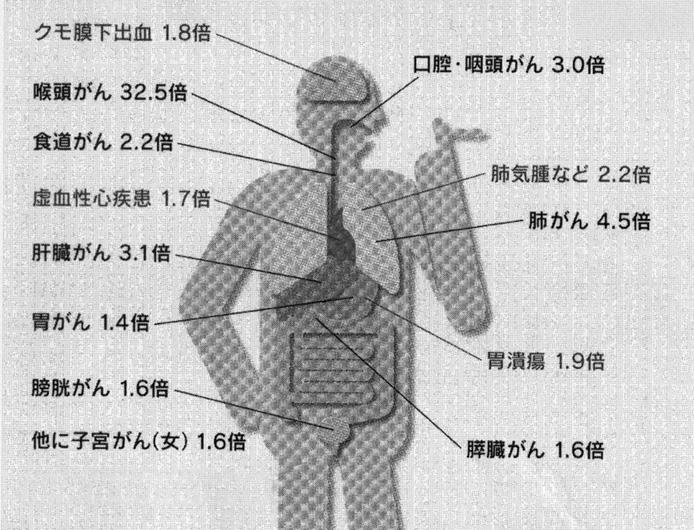 No.124号:健康ひとくちコラム②_e0100687_15495833.jpg