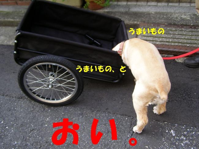 b0067012_0431084.jpg