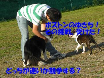 f0170713_10275127.jpg