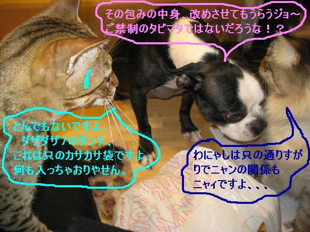 c0132537_433361.jpg