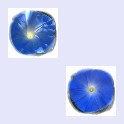 f0031546_19382268.jpg