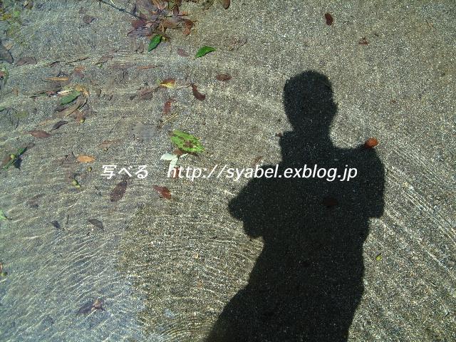 c0153764_19253319.jpg
