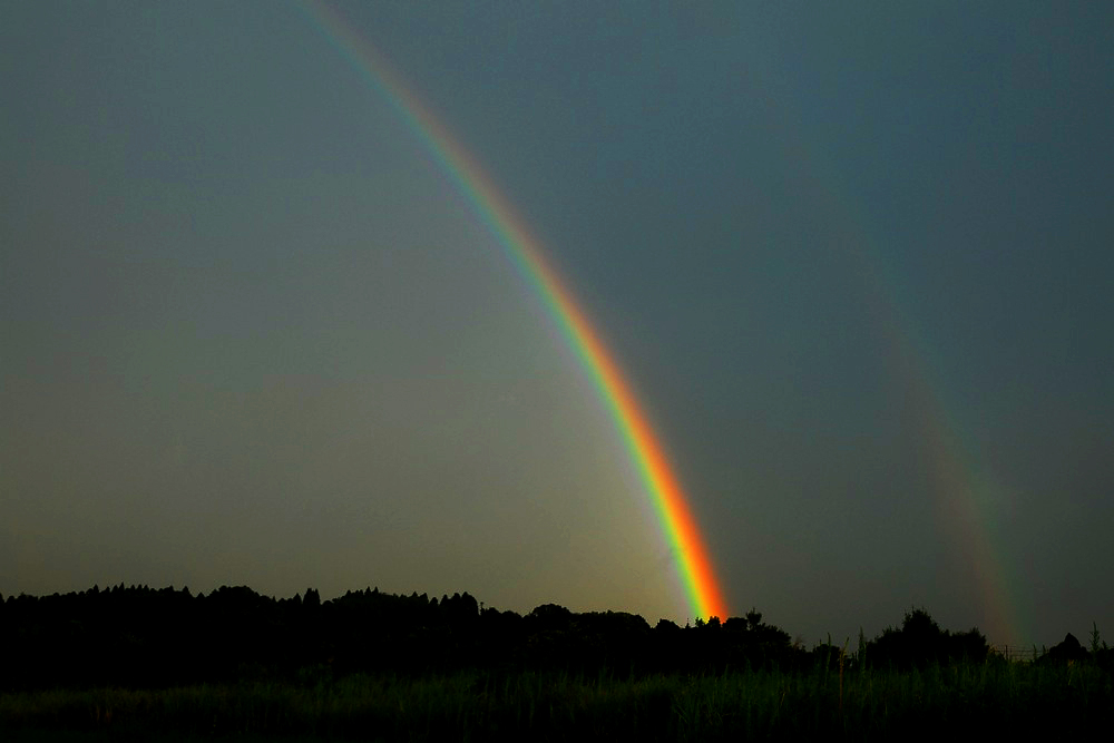 Rainbow Seeker_c0127403_138363.jpg
