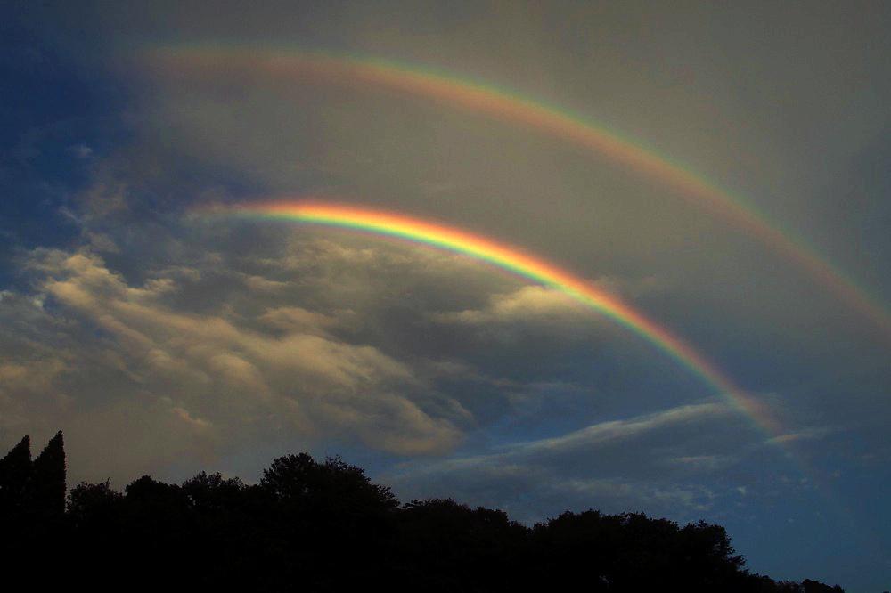 Rainbow Seeker_c0127403_1392139.jpg