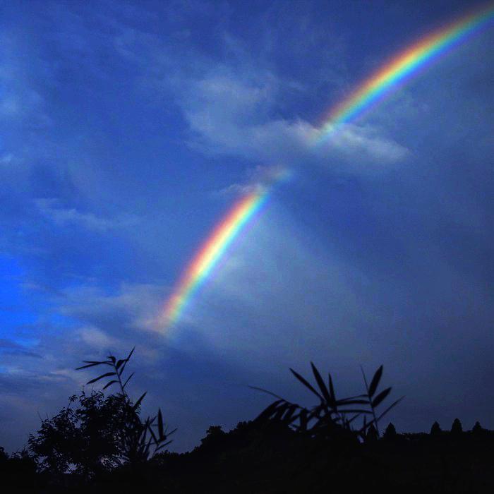Rainbow Seeker_c0127403_1394757.jpg