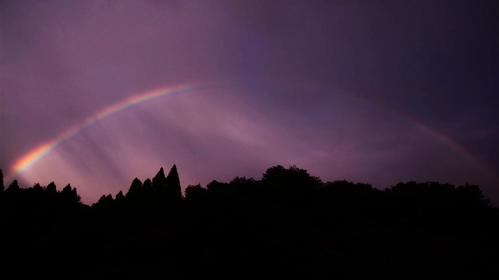 Rainbow Seeker_c0127403_139478.jpg