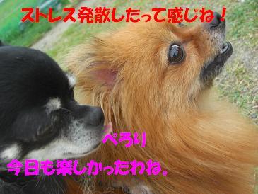 f0170713_13421448.jpg