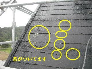 屋根塗装・初日_f0031037_21313662.jpg