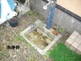 屋根塗装・初日_f0031037_2139312.jpg