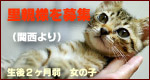 c0132438_22221955.jpg