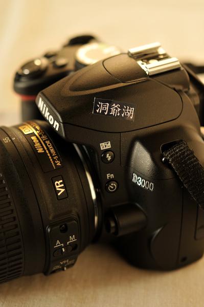 新しいカメラ_a0003650_116296.jpg