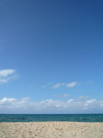 夏の終わり_e0139459_2237386.jpg