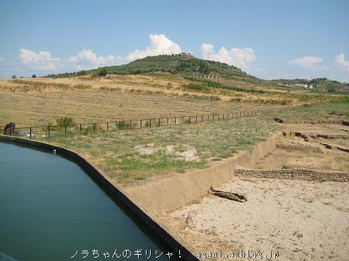 古代都市エリス遺跡付近にいたロバ子さん_f0037264_2013696.jpg