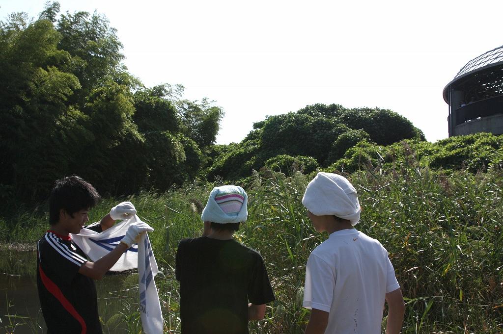 ひがた・たんぼ倶楽部のご報告(2009.9.5)_e0046474_213738100.jpg
