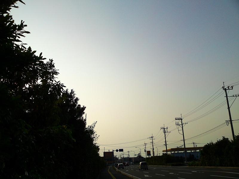 d0059213_12076.jpg