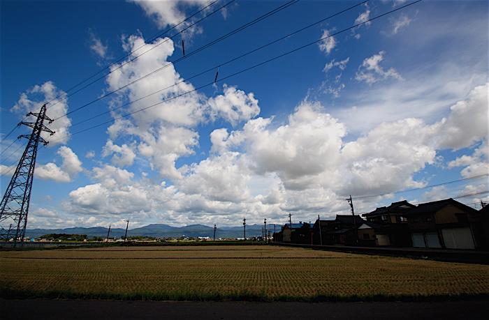 おにゅ〜のカメラ_f0165030_17545796.jpg