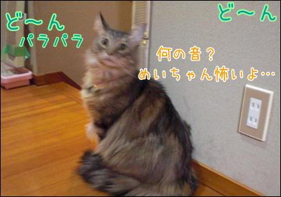 d0139352_037199.jpg