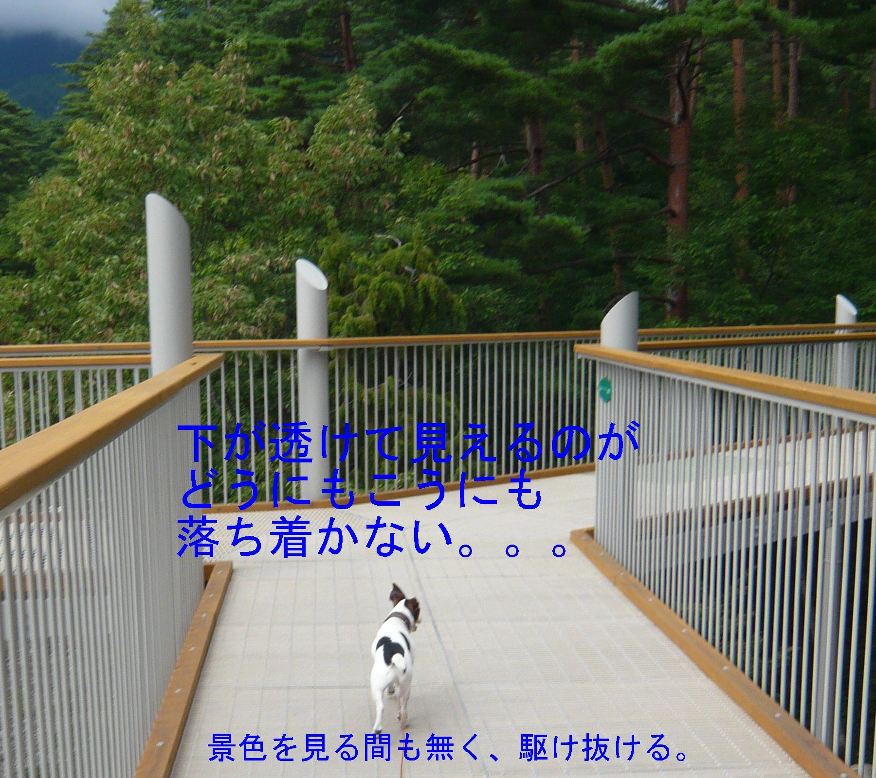 c0140260_2221520.jpg