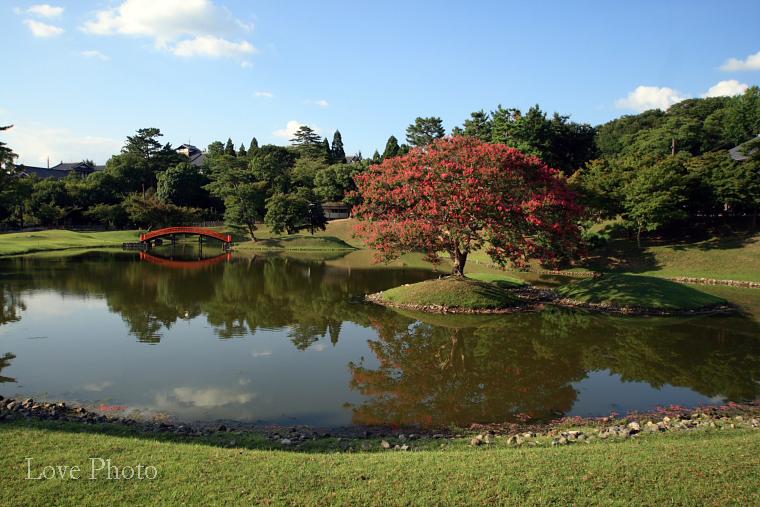 奈良 お気楽散策(3)_a0116472_14172470.jpg