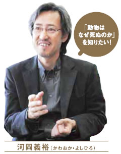 A Happy New Virus! :東大河岡教授を逮捕せよ!神戸大の秘密研究室で殺人ウィルス製造!_e0171614_1216221.jpg