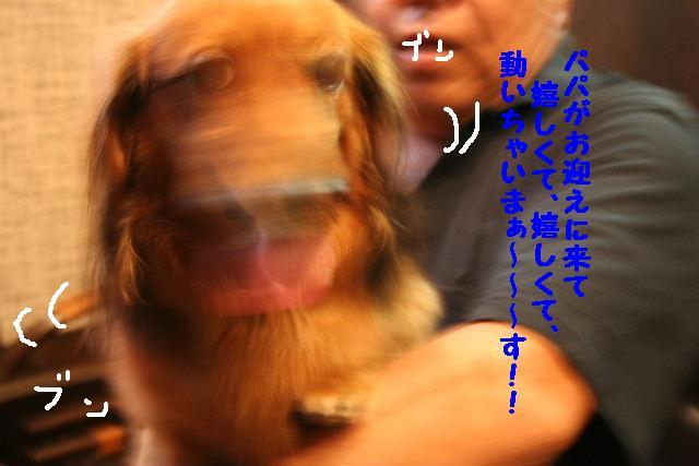 b0130018_18113878.jpg