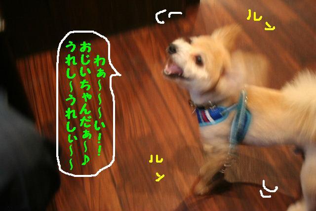 b0130018_1894577.jpg