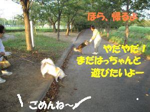 f0143123_20303232.jpg