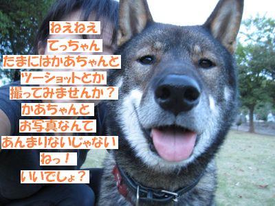 f0143123_2048213.jpg