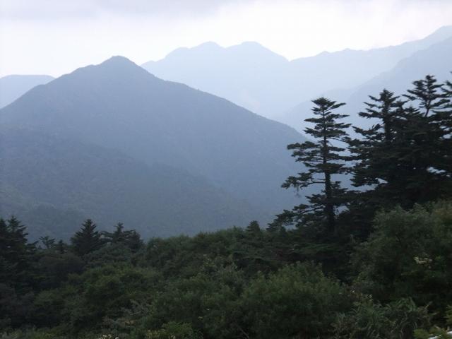 仁淀川から石鎚山へ_f0050534_851825.jpg