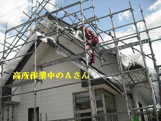 f0031037_2011238.jpg