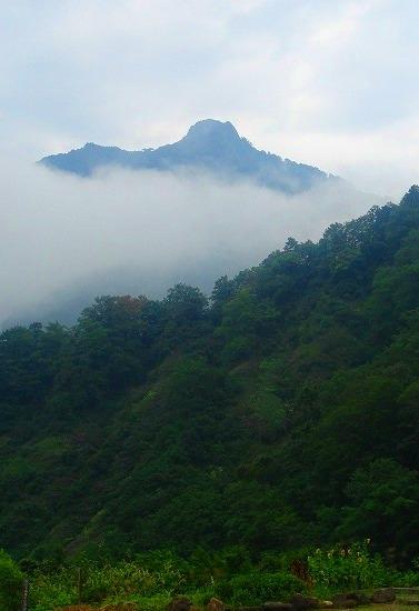 <2009年8月27~28日>フォッサマグナの名峰「雨飾山」(信越国境・頚城)_c0119160_044353.jpg