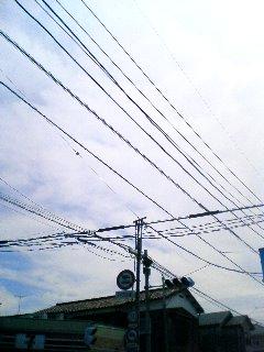 b0134269_165041.jpg