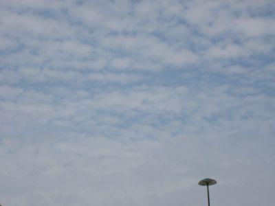 夏が過ぎ秋になり・・・。_e0003273_15304071.jpg