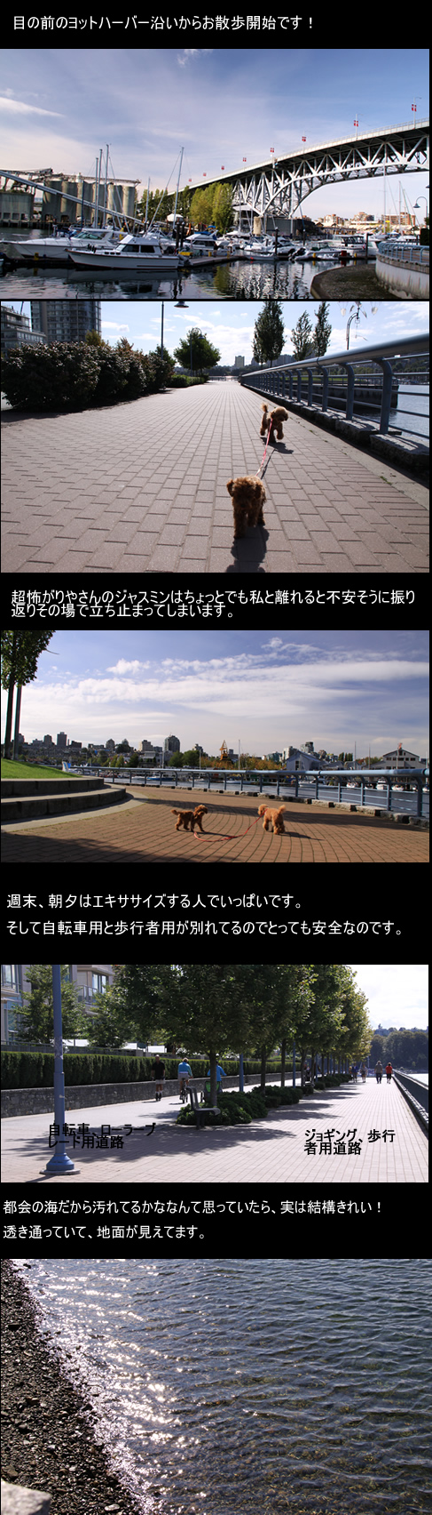c0164491_672435.jpg
