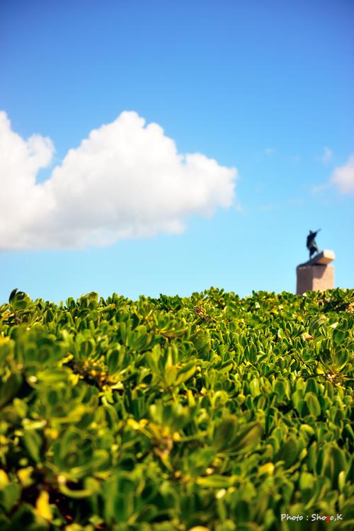 沖縄を旅する・・・(No,3)_f0186496_1335294.jpg