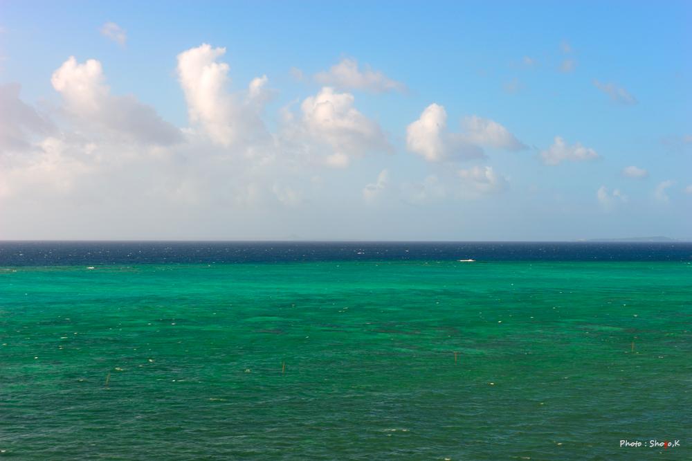 沖縄を旅する・・・(No,3)_f0186496_1342629.jpg