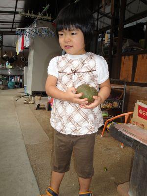 お野菜とマコちゃん_e0166301_1746485.jpg