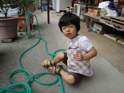 お野菜とマコちゃん_e0166301_1755743.jpg