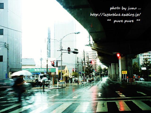雨。。。_c0172957_2315914.jpg