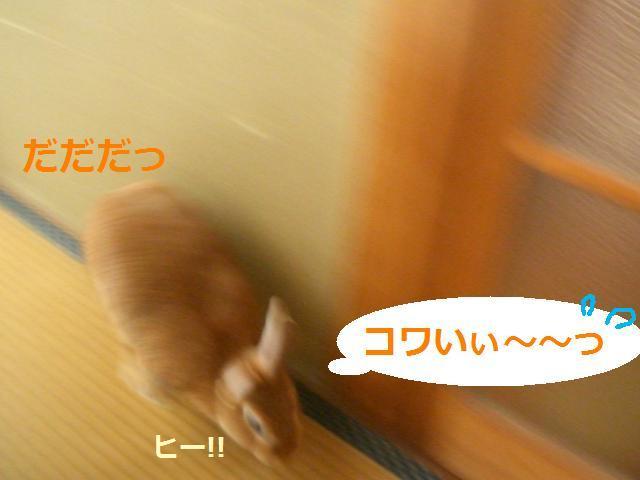 d0134977_2248750.jpg