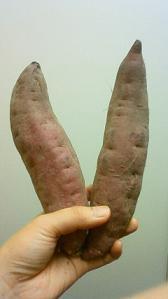 野菜にひきつづき・・・♪_f0202682_135412.jpg
