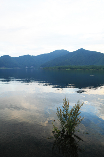 本栖湖のしずかな夜明け_c0107829_9143392.jpg