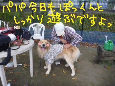 f0176830_16255836.jpg