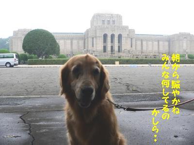 f0118135_20104519.jpg