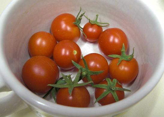 健気くん、大収穫!_c0119140_122730100.jpg