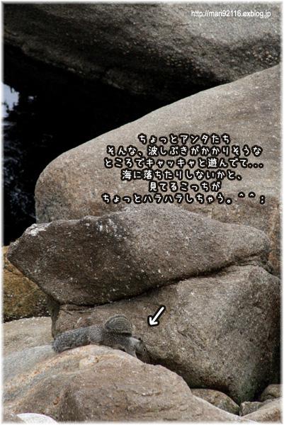 f0027944_18195797.jpg
