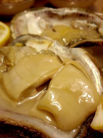実録初めて物語~岩牡蠣とひいか~_f0043911_22165337.jpg