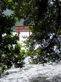 090914 箱根九頭龍神社&ライフ☆リング温泉?_f0164842_1745625.jpg
