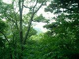 ゚・*:.。. .。.:*・゜゚・平賀城跡゚・*:.。. .。.:*・゜゚・_d0099965_15132824.jpg