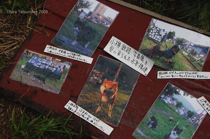 小樽鉄路写真展2009 ~最終日~ 9月13日  _d0140869_2323322.jpg